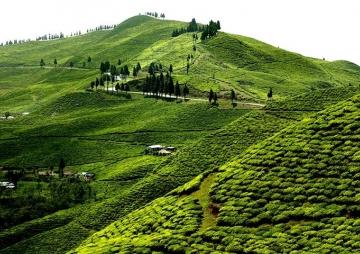 गर्मीमा चम्किँदो पूर्वी पहाड