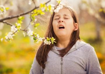 सुन्दर फूलको बैगुनी एलर्जी