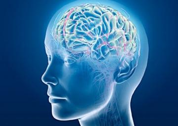अवचेतन मस्तिष्कको पुनर्निर्माण